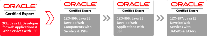 Oracle Training Partner